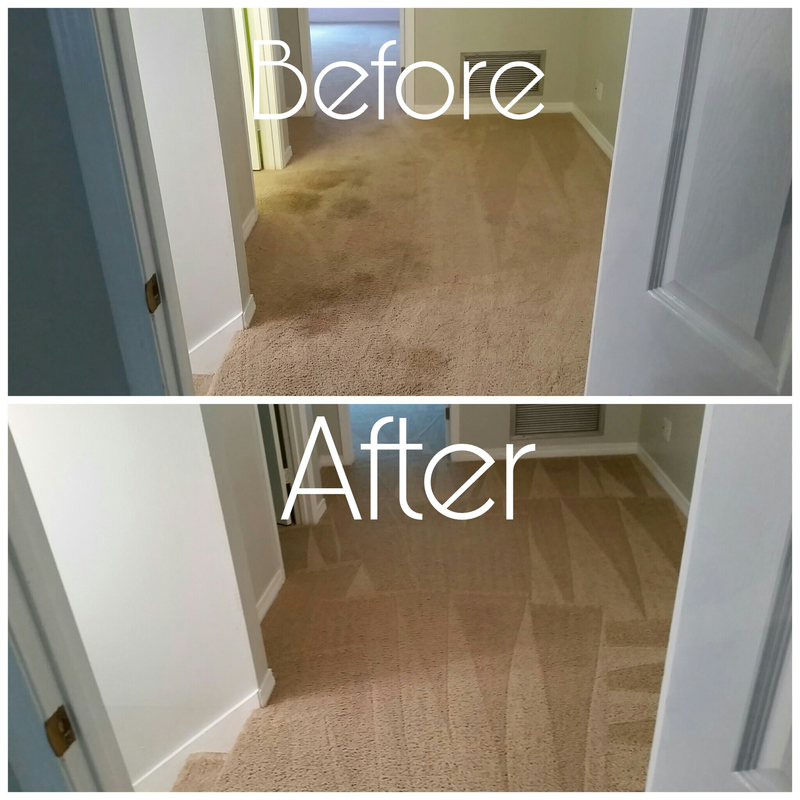 Before and After Picture of carpeting in the upstairs hallway that had a lot of spots and pet stains on it in Daphne, AL. and cleaned by Absolutely Kleen