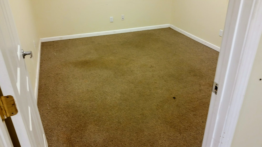 This picture shows the carpeting in one of the office areas before cleaning.