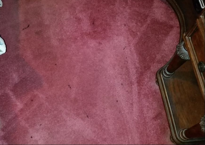 Picture of Ink Stains on carpeting prior to cleaning